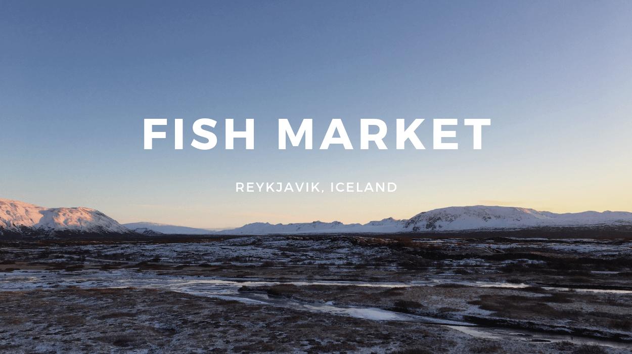 Fish Market Tasting Menu Review, Reykjavik