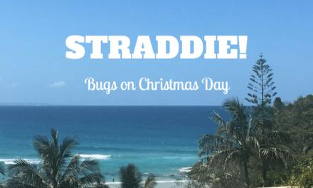 Eating Moreton Bay Bugs on Stradbroke Island, Australia