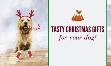 Best Tasty Christmas Presents for Your Dog