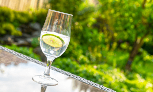 7 Gins to Try this Summer