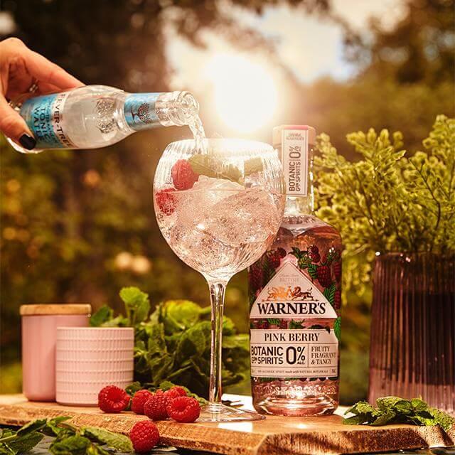 Warners Pink Berry Gin
